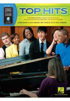 Sing With The Choir Vol. 17: Top Hits